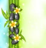 De achtergrond van de kuuroordtherapie met bamboe, stenen en frangipanibloem Stock Foto's