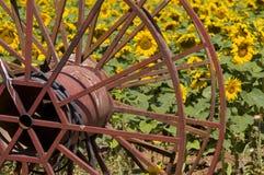 De Achtergrond van de landbouw Royalty-vrije Stock Afbeelding
