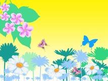 De achtergrond van de lente Royalty-vrije Stock Foto's
