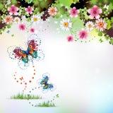 De achtergrond van de lente Stock Afbeeldingen