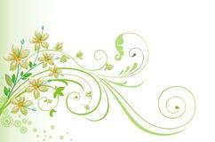 De Achtergrond van de lente en van de Zomer. Royalty-vrije Stock Afbeelding