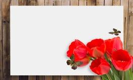 De achtergrond van de lente Plaats voor uw tekst Royalty-vrije Stock Fotografie