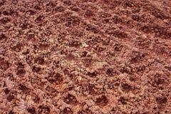 De achtergrond van de modder en van de grond Stock Afbeeldingen