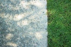 De Achtergrond van de muur op groen gras Stock Foto