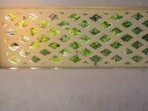 De achtergrond van de muurtextuur en groene bladeren Stock Afbeeldingen