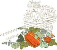 De Achtergrond van de pompoen Royalty-vrije Stock Fotografie