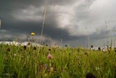 De achtergrond van de prairie Royalty-vrije Stock Foto's