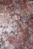 De Achtergrond van de rotstextuur - rood royalty-vrije stock foto's