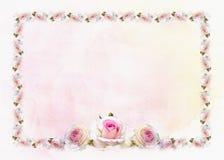 De achtergrond van de rozengrens Stock Afbeelding