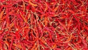 De achtergrond van de Spaanse peper Stock Fotografie