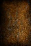 De achtergrond van de textuur - oud wijnoogst bevlekt leer Royalty-vrije Stock Foto