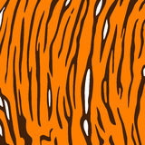 De achtergrond van de tijgerhuid. Stock Foto