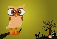 De Achtergrond van de Uil van Halloween Stock Afbeeldingen