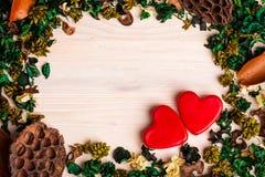 De achtergrond van de valentijnskaartendag met droge installaties Stock Foto
