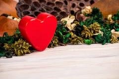 De achtergrond van de valentijnskaartendag met groene bruine droge installaties Royalty-vrije Stock Afbeeldingen