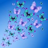De achtergrond van de vlinder Stock Afbeeldingen