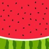 De achtergrond van de watermeloenplak met zaad en huidtextuur stock foto's
