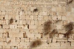 De achtergrond van de Weaternmuur Stock Afbeeldingen