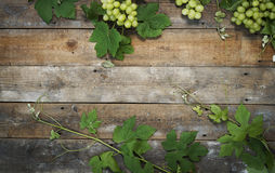 De achtergrond van de wijn Stock Afbeelding