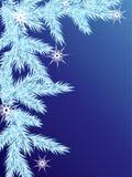 De achtergrond van de winter. Stock Foto