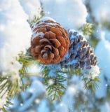 De achtergrond van de winter Stock Afbeeldingen