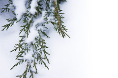 De achtergrond van de Winter van de kunst royalty-vrije stock afbeelding
