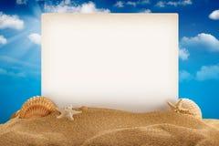 De achtergrond van de zomer Stock Fotografie