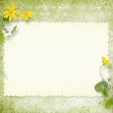 De achtergrond van de zomer met gebied voor uw tekst Royalty-vrije Stock Afbeeldingen