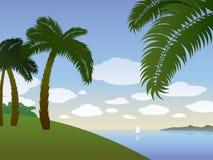 De achtergrond van de zomer met palmen Stock Afbeeldingen