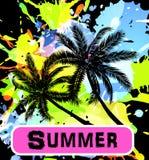 De achtergrond van de zomer met palmen Royalty-vrije Stock Foto