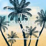 De achtergrond van de zomer met palmen Stock Fotografie