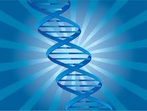 De achtergrond van DNA Stock Foto