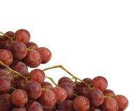 De achtergrond van druiven Stock Foto's