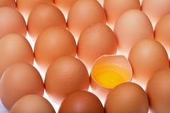 De achtergrond van eieren Royalty-vrije Stock Afbeeldingen