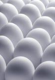 De achtergrond van eieren Stock Afbeelding