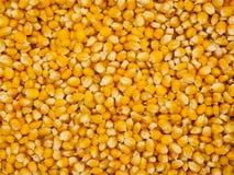 De Achtergrond van graankorrels Royalty-vrije Stock Afbeelding