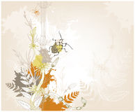 De achtergrond van Grunge met een insect Royalty-vrije Stock Foto