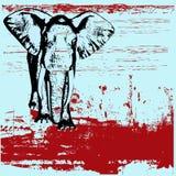 De Achtergrond van Grunge van de olifant