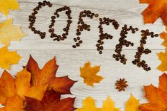 De achtergrond van de herfst Rode en oranje het bladclose-up van de kleurenKlimop De boon van de koffie royalty-vrije stock foto