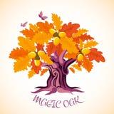 De achtergrond van de herfst Rode en oranje het bladclose-up van de kleurenKlimop Eik met gouden gebladerte en eikels Elegante Vl stock illustratie