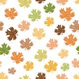 De achtergrond van de herfst Rode en oranje het bladclose-up van de kleurenKlimop Naadloos patroon van dalende kleurrijke esdoorn royalty-vrije illustratie
