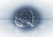 De Achtergrond van hersenen royalty-vrije illustratie