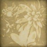 De Achtergrond van het Af:drukken van de bloem Royalty-vrije Stock Afbeeldingen