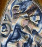 De Achtergrond van het Ascorbinezuur Royalty-vrije Stock Fotografie