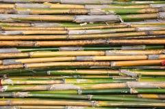 De achtergrond van het bamboe Stock Afbeelding