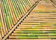 De achtergrond van het bamboe Royalty-vrije Stock Foto