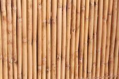 De Achtergrond van het bamboe Royalty-vrije Stock Afbeeldingen