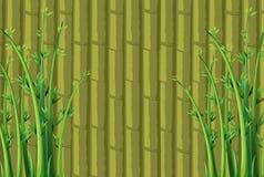 De achtergrond van het bamboe Stock Foto's