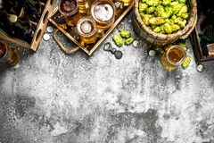 De achtergrond van het bier Vers bier met ingrediënten stock foto's