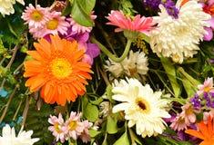 De achtergrond van het bloemboeket stock afbeelding